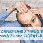 増毛と植毛は何が違う?薄毛を増やす5つの方法